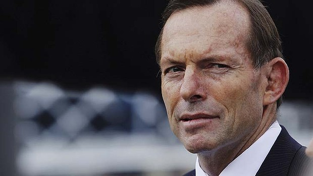 Tony Abbott's election decision: should he go early?