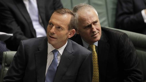 It's on? How Abbott's leadership is in doubt … again