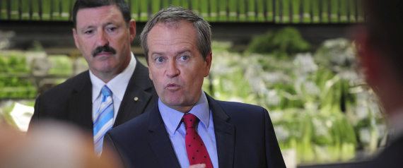 Lettuce rejoice: Shorten finds new cause for hope