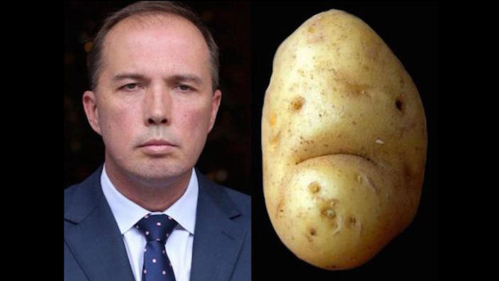 'A buzz-cut and a tan': Signs Abbott's cheerleaders want Dutton in the Lodge