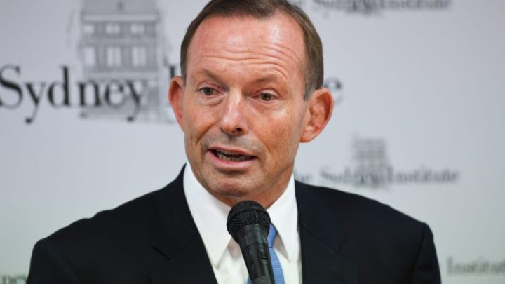 Abbott falls into yawning gap of his own irrelevance